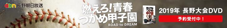 高校野球 長野大会DVD